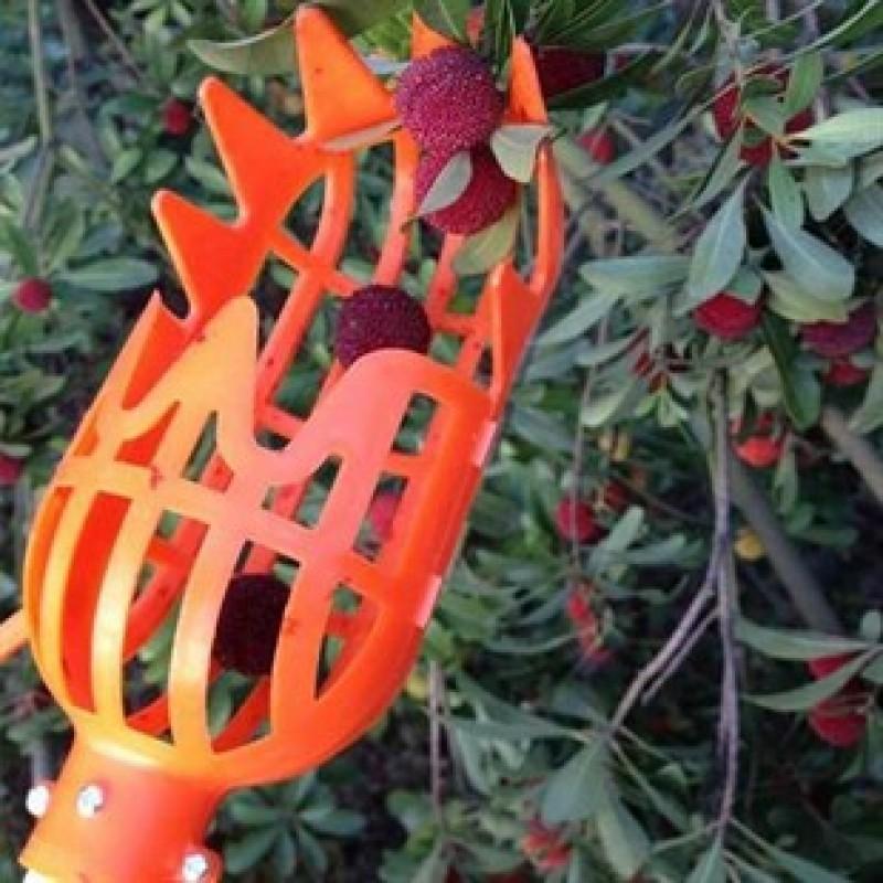 Yüksek Dal Meyve Toplama Aparatı